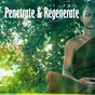 Album Penetrate & regenerate de Guided Meditation