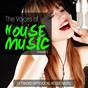 Compilation The voices of house music, vol. 2 (15 tracks with vocal house music) avec Grooveprofessor, Syb / Salt / Martello / Pray for More / The Str8jackets...