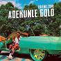 Album Friend zone de Adekunle Gold