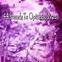 Album 44 sounds to optimise peace de Zen Music Garden