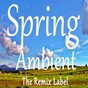 Album Spring ambient (inspirational ambient chillout music on the remix label) de Christian Paduraru