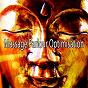 Album Massage parlour optimisation de Massage