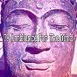 Album 79 ambience for the mind de Ambiente