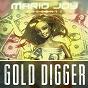 Album Gold digger (balkan remix) de Mario Joy
