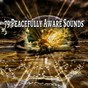 Album 79 peacefully aware sounds de Yoga Workout Music