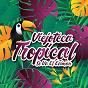 Compilation Viejoteca tropical / se va el caimán avec Anibal Velasquez / Edmundo Arias Y Su Orquesta / Billo's Caracas Boys / Pedro Laza Y Sus Pelayeros / Alejandro Durán...