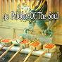 Album 40 pebbles of the soul de Asian Zen Spa Music Meditation
