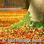 Album 42 Soul Massage Auras de Music for Reading