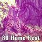 Album 80 home rest de Smart Baby Lullaby