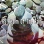 Album 65 realm of the rain de Yoga Sounds