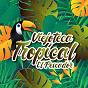 """Compilation Viejoteca tropical / el pescador avec Anibal Velasquez / Los Wawanco / Aníbal """"Sensación"""" Velásquez Y Su Conjunto Show / Alejandro Durán / Los Melódicos..."""