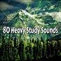 Album 80 heavy study sounds de White Noise Research