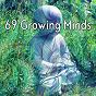 Album 69 growing minds de Massage