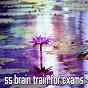 Album 55 brain train for exams de Massage