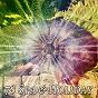 Album 78 spa & holiday de Spa Relaxation
