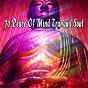 Album 70 peace of mind tranquil soul de White Noise Research