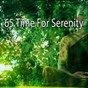Album 65 time for serenity de White Noise Therapy