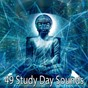 Album 49 study day sounds de Brain Study Music Guys