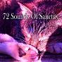 Album 72 sounds of sanctity de Nature Sounds Nature Music