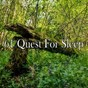 Album 61 quest for sleep de White Noise Babies