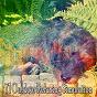 Album 71 outdoor relaxing simulation de Trouble Sleeping Music Universe