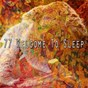 Album 77 welcome to sleep de Relaxing Music Therapy