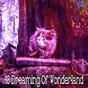 Album 48 dreaming of wonderland de Serenity Spa Music Relaxation