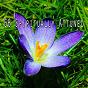 Album 66 spiritually attuned de Yoga