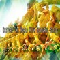Album Restore the world with binaural beats de Binaural Beats