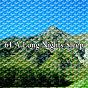 Album 61 a long nights sleep de Ocean Sounds Collection