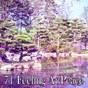 Album 71 Feeling at Peace de Japanese Relaxation & Meditation