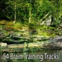 Album 54 brain training tracks de White Noise Therapy