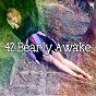 Album 42 bearly awake de Relajacion del Mar