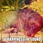 Album 54 happiness in sound de Sleepicious