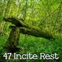Album 47 incite rest de Relax Musica Zen Club