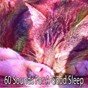 Album 60 sounds for a good sleep de Sleep Sounds of Nature