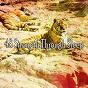 Album 48 strength through sleep de Sleepy Night Music