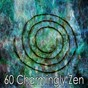 Album 60 charmingly zen de White Noise Meditation