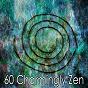 Album 60 charmingly zen de White Noise Meditation