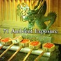 Album 71 ambient exposure de Asian Zen Spa Music Meditation