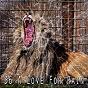 Album 36 a love for rain de Rain for Deep Sleep