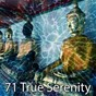 Album 71 true serenity de Musica Relajante