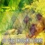 Album 39 peace inducing storms de Rain for Deep Sleep