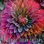 Album 65 Serene Dream Factory de Trouble Sleeping Music Universe