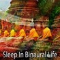 Album Sleep in binaural life de Binaural Beats Sleep