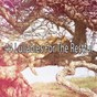 Album 44 Lullabies for the Restful de Smart Baby Lullabies