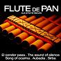 Album Les plus grands succés de la flûte de pan aux synthétiseurs de Pablo Montoya