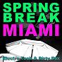 Compilation Spring break miami 2010 avec Mikael Jonasson / James Searles / Calvertron / The Sloppy 5th'S / Fiasko...
