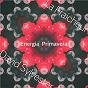 Album Energia primavera de David Sylvester / La Fraicheur