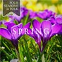 Compilation Four Seasons in Folk: Spring avec June Tabor / Martin Simpson / Andy Cutting / Nancy Kerr / Dick Gaughan...